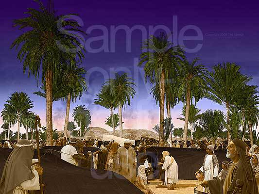 Camp, 70 palms, Elim, Moses, G-D, Israel